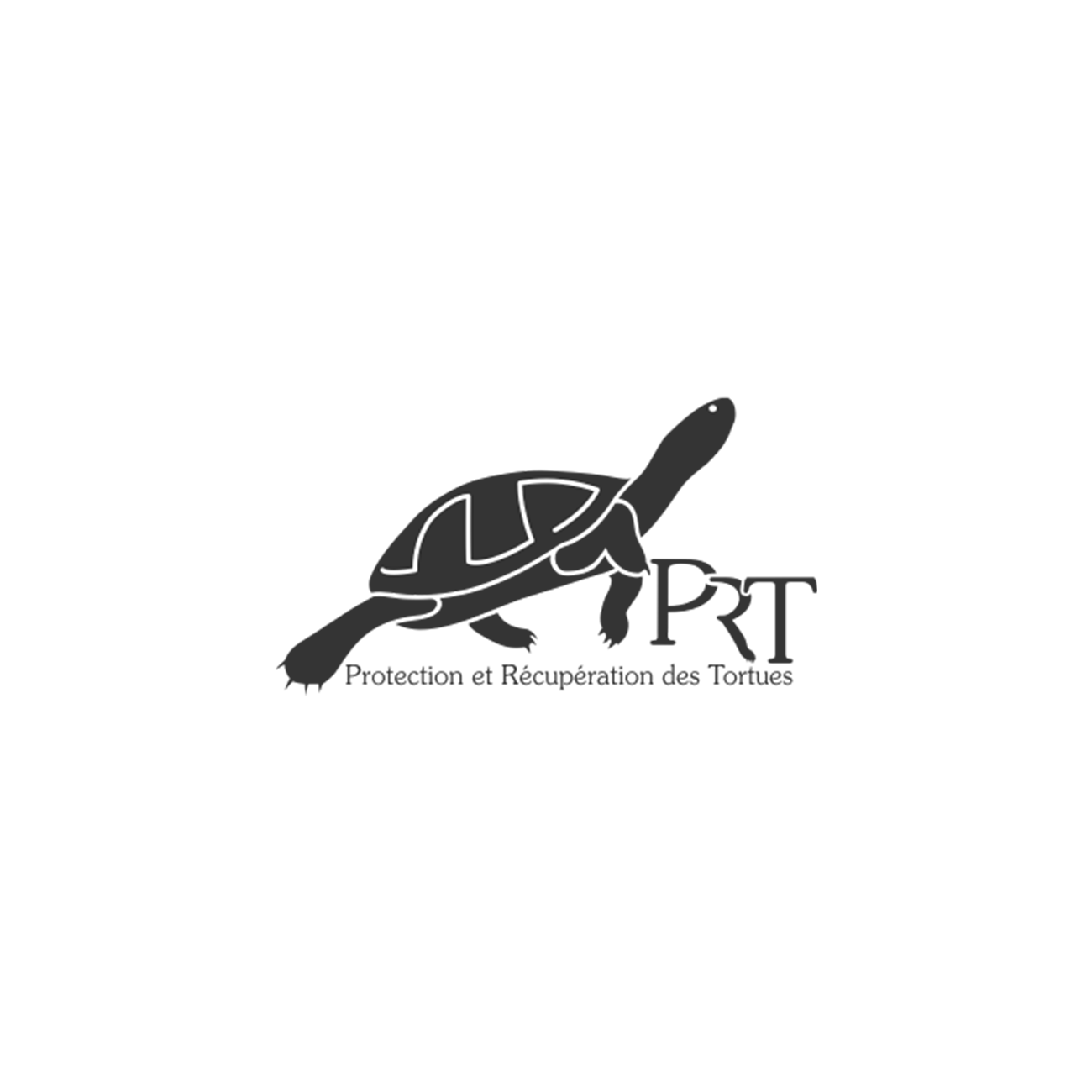 PRT protection Tortues